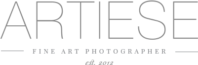 ARTIESE Photography | Toronto & Destination Wedding Fine Art Film Photographer