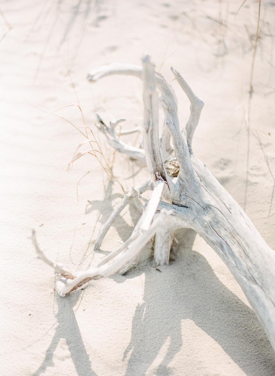 artiese-outdoor-beach-park-engagement-megan-johnathan-000026390002